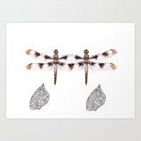 Twin Dragonfly Art Print