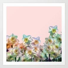 Narcissus variation Art Print