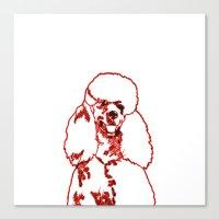 poodle Canvas Prints featuring Poodle by Mike van der Hoorn