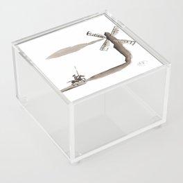 Don Quixote de la Mancha Acrylic Box