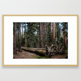 The Fallen King Framed Art Print