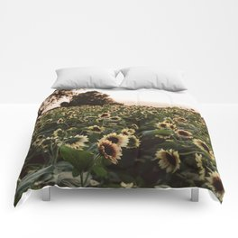 Sunflower fields and peach skies Comforters
