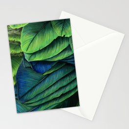 Feather Study Stationery Cards
