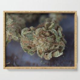 Deep Sleep Medicinal Medical Marijuana Serving Tray