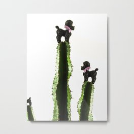 Poodle cacti Metal Print