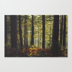 Autumn Wood Canvas Print