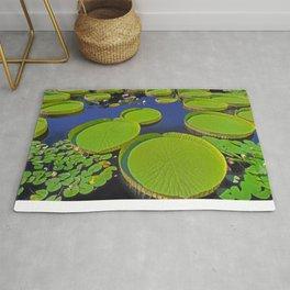 Water Platters Rug