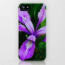 Wild Purple Iris iPhone Case