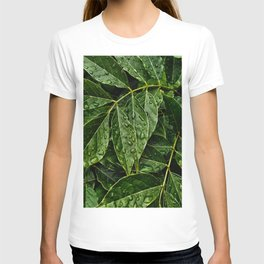 Layers Of Wet Green Leaves Water Droplets On Plant Leaves T-shirt
