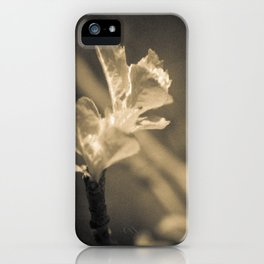 Trace of Spring iPhone Case