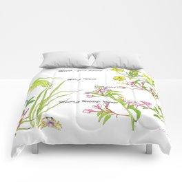 Chatham Spring Morris Island Comforters