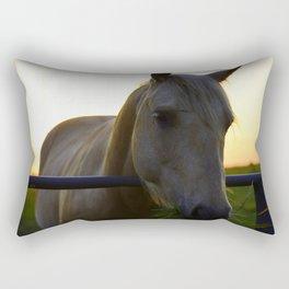 Beautiful Horse at Sunset Rectangular Pillow