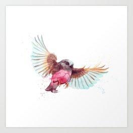 Pink Robin Bird Art Print
