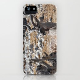 Kudu 2 iPhone Case