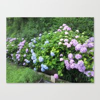 kobe Canvas Prints featuring Flowers in Kobe by Michelle Brand