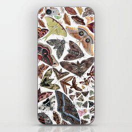 Moths of North America iPhone Skin