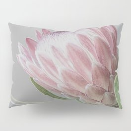 Protea In Isolation Pillow Sham