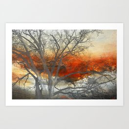 Sunset Print  Art Print