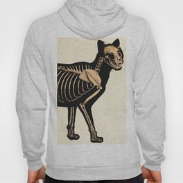 Vintage French zoological board - Cat skeleton Hoody