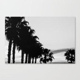 Palm tree Line up! Canvas Print