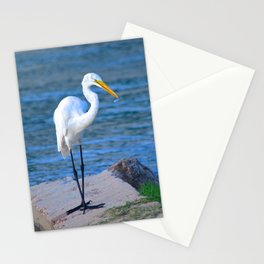 fishing at dusk Stationery Cards