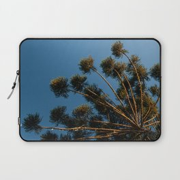 Araucaria Branches Laptop Sleeve