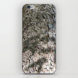 Sycamore Tree Bark iPhone Skin