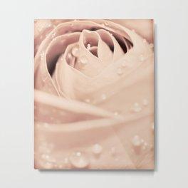 Drops on Rose Metal Print