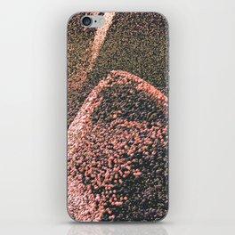 Cascata. iPhone Skin