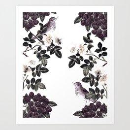 Blackberry Spring Garden - Birds Bees and Flowers Art Print