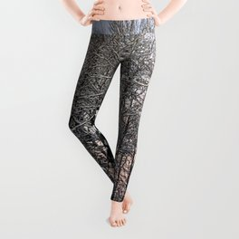 Forest Snowy Day Leggings