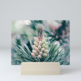 Pine branch Mini Art Print
