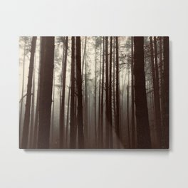 Forest Mists 3 Metal Print