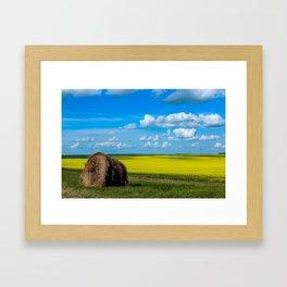 Walk through fields of gold Framed Art Print