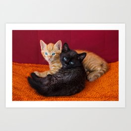 two cute kittens cuddle on orange sofa  Art Print