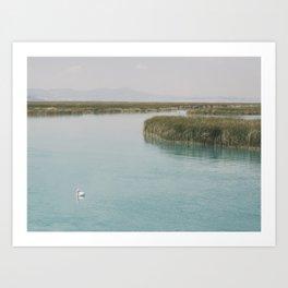 Bulrush On The Lake Art Print