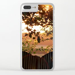 Sunset Through The Trees Clear iPhone Case