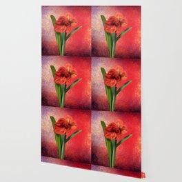 Red Amaryllis Wallpaper