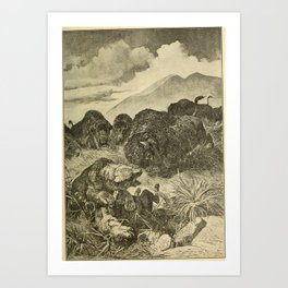 Vintage Print - Animals in Action (1901) - Grizzly Bear attacked by Buffaloes Art Print