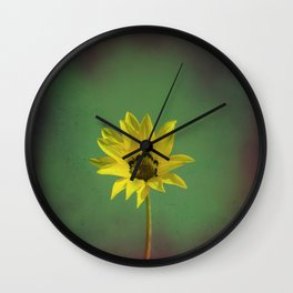The yellow flower of my old friend Wall Clock