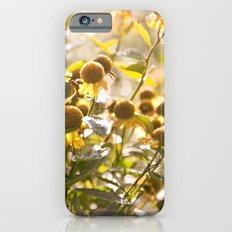 Flowers in Mt. Rogers, Virginia iPhone 6s Slim Case