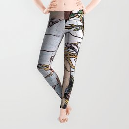 The Mermaid Window - Elihu Vedder Leggings