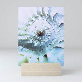 Melon Shell Abstract Mini Art Print