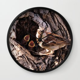 House Sparrow Keeping House Wall Clock