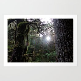 In the Forest Fantasy Art Print