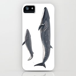 Sei whale (Balaenoptera borealis) iPhone Case