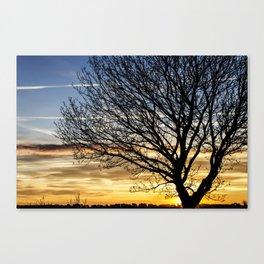 Tree Sunrise 2 Canvas Print