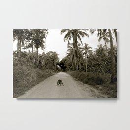 Tonga Dog Metal Print