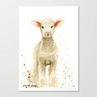 lamb Canvas Prints featuring Lamb by Priscilla George