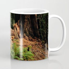 Muir Woods Coffee Mug